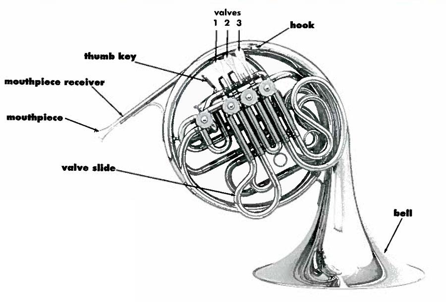 musical horn diagrams online wiring diagram